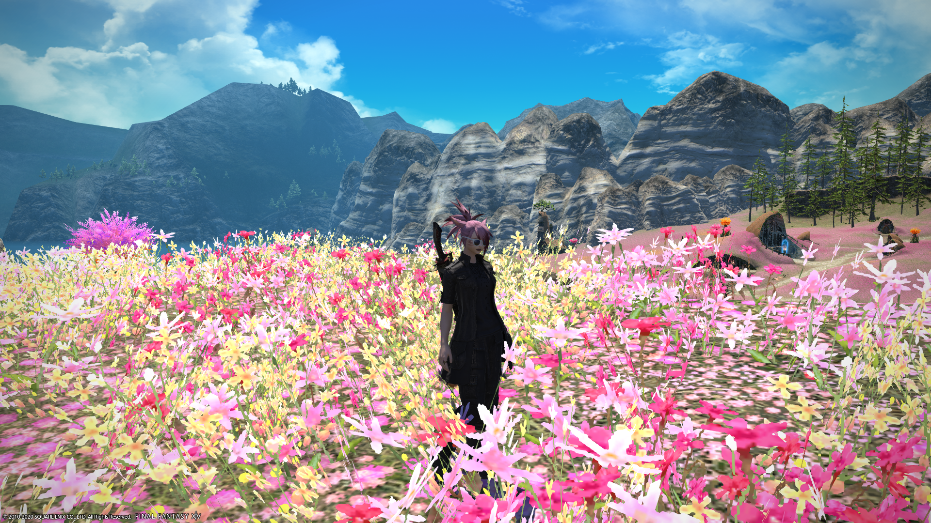 Character in field of flowers